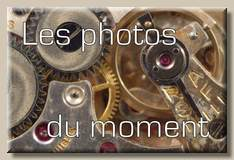 photos